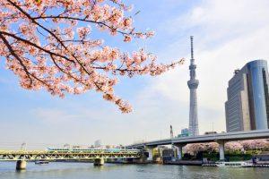 昼間の東京スカイツリーは青空に美しく映える風貌。前撮りやフォトウェディングではドレスだけでなく和装にも映えそう