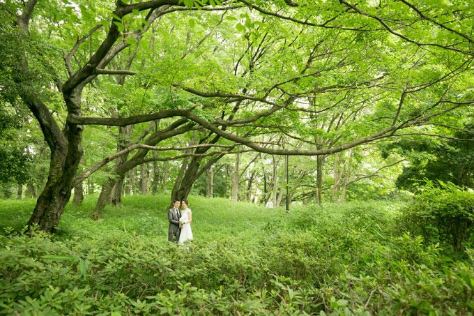 木々の緑と木漏れ日に包まれる森の中でのウェディングフォト