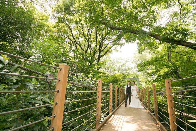 四季折々の魅力を間近で見られる砧公園の吊り橋