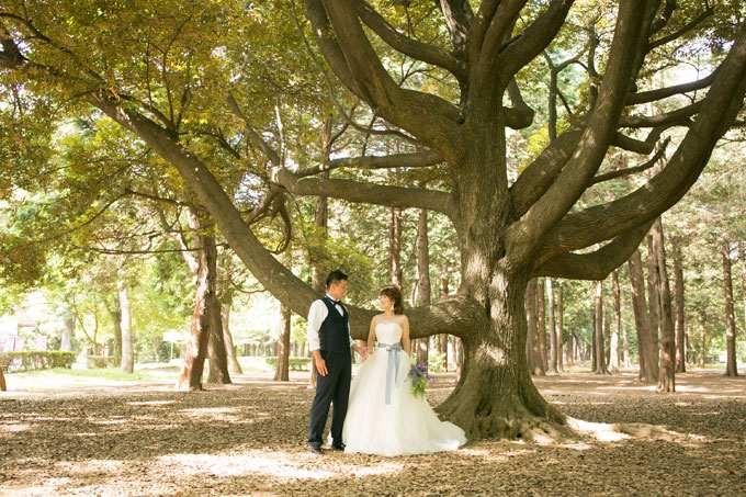 豊かな自然の中で、自然な表情が撮影できる代々木公園でのフォトウェディング