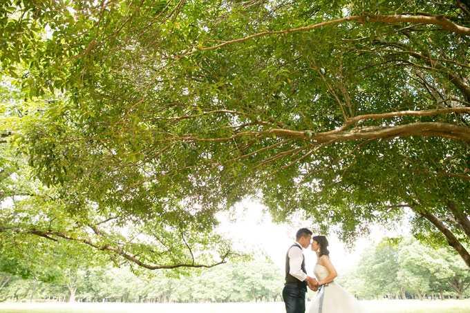 木漏れ日が降り注ぐ森の中のような雰囲気も代々木公園なら自由自在